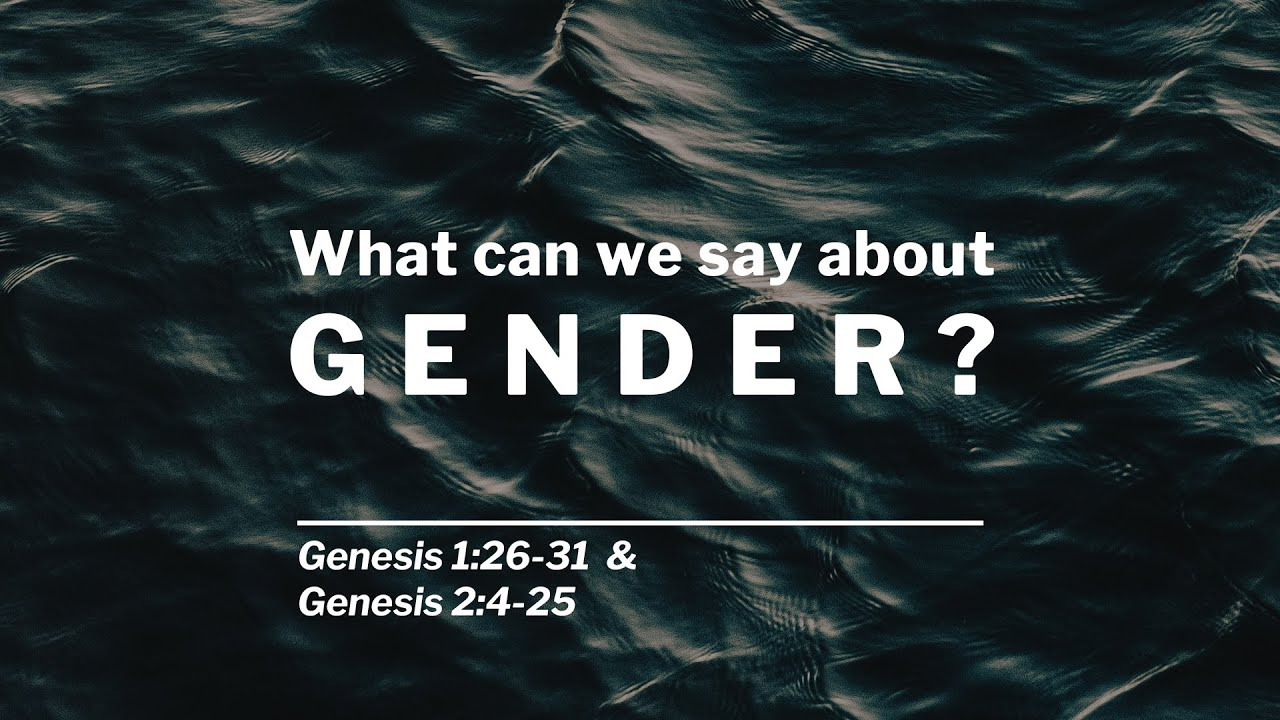 What can we say about Gender?